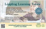 Leapfrog Learning... is a Tutor